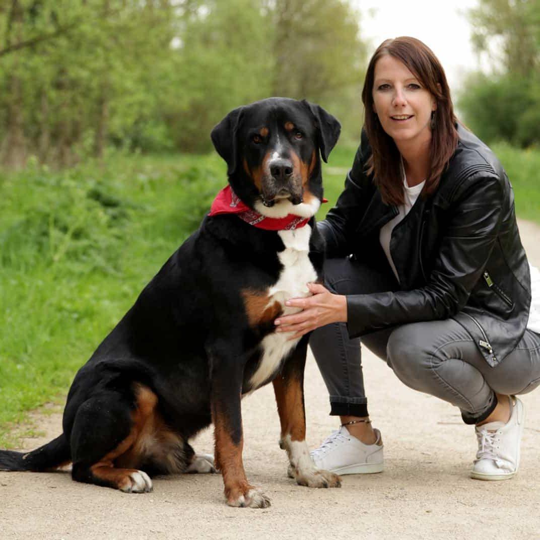 Online training spiegelen met je hond - Bo vertelt